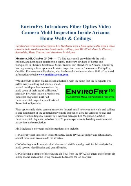 EnviroFry Introduces Fiber Optics Video Camera Mold