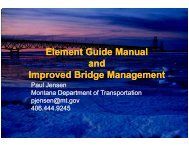 Element Guide Manual and Improved Bridge Management Improved ...