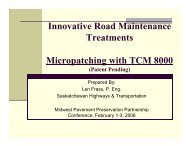 Innovative Road Maintenance Treatments Micropatching ... - TSP2