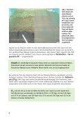 Der Antifouling-Wirkstoff Irgarol - Umweltbundesamt - Seite 6