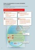 Etichettare i prodotti chimici in modo corretto e conforme ... - Cheminfo - Page 6