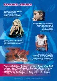 Plakat - HS-Langschlag