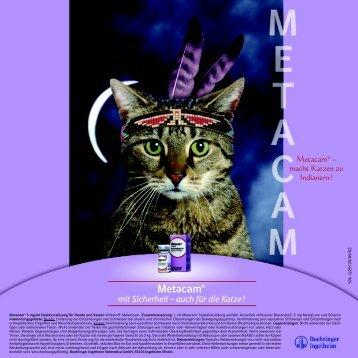 Metacam® - Katze & Du