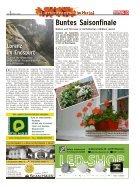 Gartenträume im Herbst 2014 - Seite 4