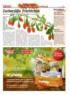 Gartenträume im Herbst 2014 - Seite 5