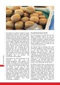 pdf Herunterladen auf Deutsch - Felco - Page 6