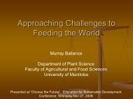 Approaching Challenges to Feed the World