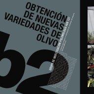 OBTENCIÓN DE NUEVAS VARIEDADES DE OLIVO - Helvia ...