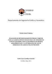 Departamento de Ingeniería Gráfica y Geomática TESIS DOCTORAL
