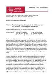 (pdf)... - Technische Universität Braunschweig