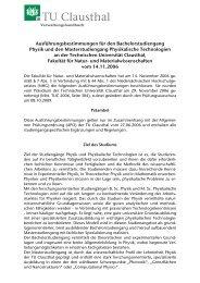 Ausführungsbestimmungen für den ... - TU Clausthal