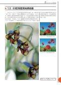 Canon EOS 7D 相机性能 - Page 7