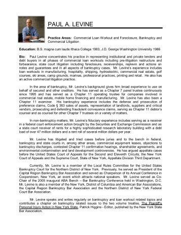 Paul Levine - Turnaround Management Association