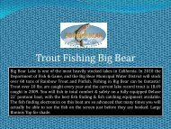 Trout Fishing Big Bear