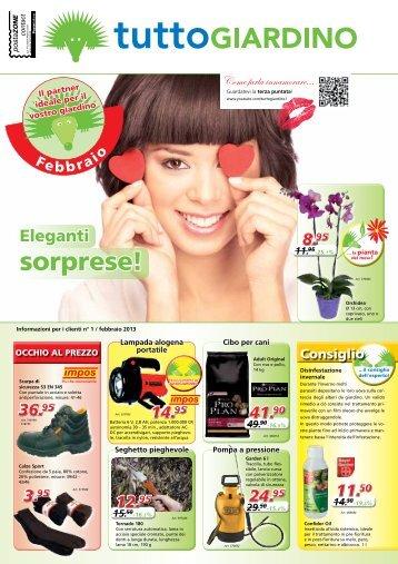 Brescia verona vicenza tutto giardino for Volantino obi ravenna