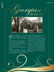 Georgian Arabians sits in the West - tutto arabi