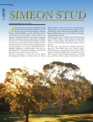 At Simeon Stud we are eagerly awaiting the birth of the ... - tutto arabi