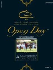 DUBAI ARABIAN HORSE STUD - tutto arabi