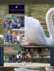 www.tuttoarabi.com STUD