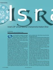 Israel's 28th annual National Championship Arabian Show - tutto arabi