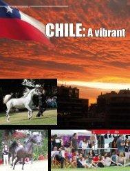 """""""Exposición CHILE:A vibrant - tutto arabi"""