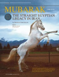 THE STRAIGHT EGYPTIAN LEGACY IN IRAN - tutto arabi