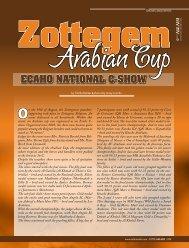 Zottegem ECAHO NATIONAL C-SHOW - tutto arabi