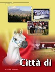 SHOWS AND EVENTS 302 | TUTTO ARABI - www.tuttoarabi.com
