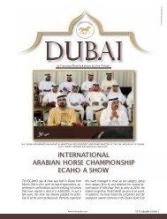 international arabian horse championship ecaho a show - tutto arabi