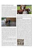 Download Heft 05 / Mai 2013 - Tutzinger Nachrichten - Page 5