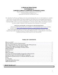 A Step by Step Guide to Forming a Limited Liability ... - Penn State Law