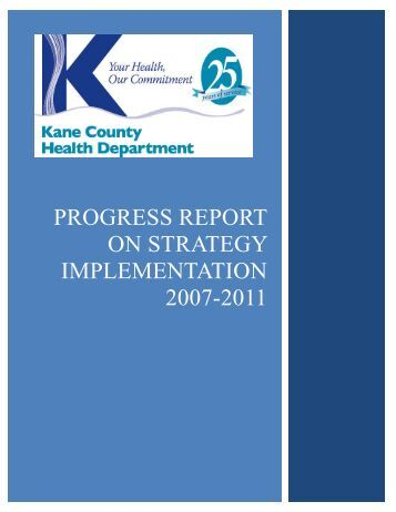 Progress Report on Strategy Implementation 2007-2011