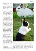 Mai / Juni 2012 - Zooshop-MAX - Page 4