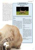 Mai / Juni 2012 - Zooshop-MAX - Page 7