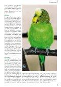 Aus Alt wird Neu - Zooshop-MAX - Page 5