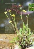 Bauen, Graben, Pflanzen - Zooshop-MAX - Page 3