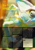 """""""Welpenfit"""" fürs große Glück? - Zooshop-MAX - Page 6"""
