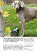 September 2011 - Ausgabe 76 - Petmeds.de - Page 3