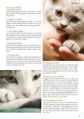 September 2011 - Ausgabe 76 - Petmeds.de - Page 6