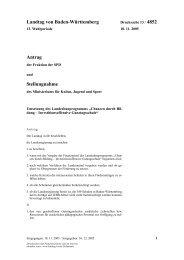 Stellungnahme KuMi zum Landes IZBB Programm
