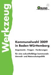 Kommunalwahl 2009 in Baden-Württemberg