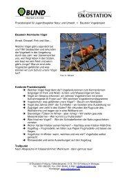 JB-Praxisbeispiel Vogelprojekt - Ökostation Freiburg