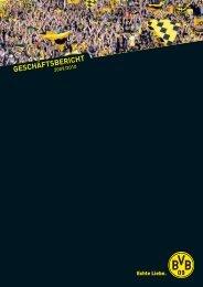 Geschäftsbericht 2009/2010 - BVB Aktie - Borussia Dortmund