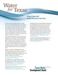 Water Loss and Leak Detection Services - Texas Water ...