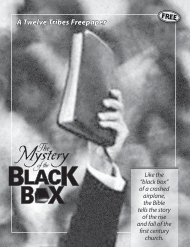 The Mystery of the Black Box (PDF) - The Twelve Tribes