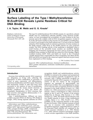 restriction enzymes research papers Read this science research paper and over 88,000 other research documents enzyme examination of the effects of inhibitory and non-inhibitory competition, enzyme-substrate concentration, along with varying temperature and ph-balanced environments on the.