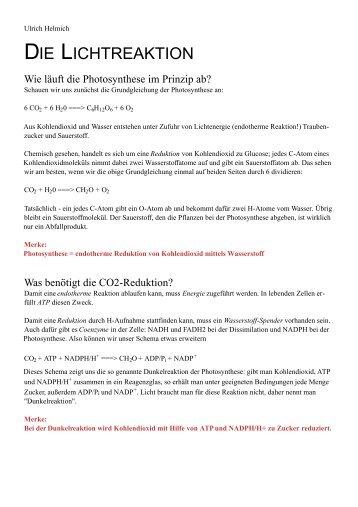 DIE LICHTREAKTION - Ulrich Helmich