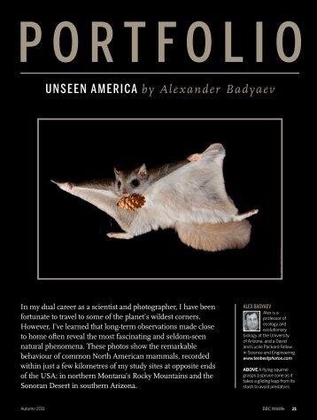 UNSEEN AMERICA by Alexander Badyaev - University of Arizona