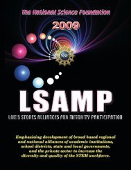 2010 LSAMP Magazine - University of Alabama at Birmingham