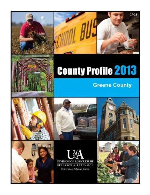 County Profile (PDF) - University of Arkansas Cooperative Extension ...